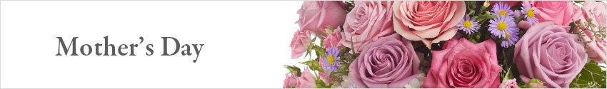 Send Mother's Day Flowers with Nature's Wonders Florist