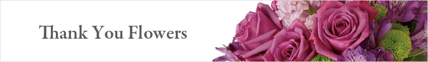 Send Thank You Flowers with Nature's Wonders Florist