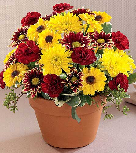 FTD's Autumn Glory Bouquet
