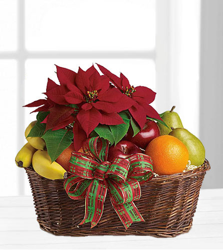 Fruit & Poinsettia Basket