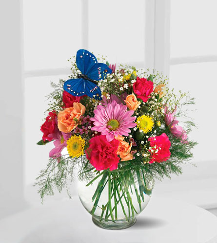 Teleflora's Butterfly and Blossoms Vase